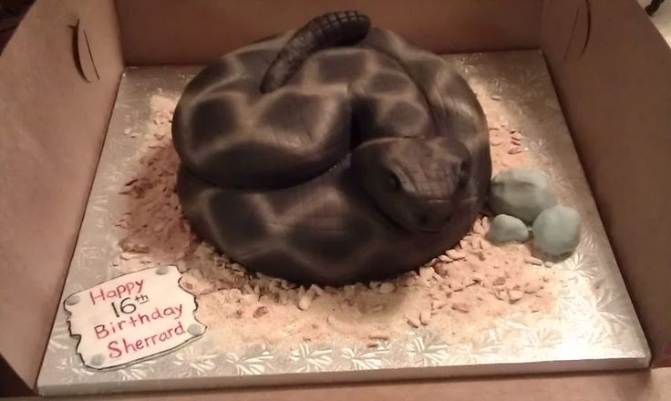 This is my very first snake cake. I baked 2- 10 inch round cakes, torted, filled and carved. The head & tail are made of RKT. Cake covered in fondant, then airbrushed.