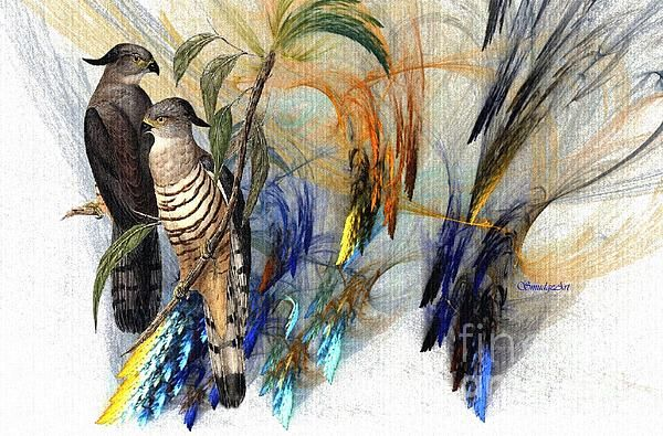 Two beautiful hand drawn Crested Hawks...