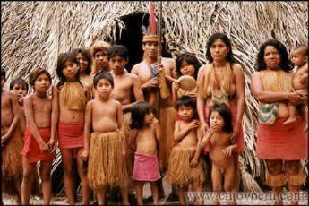 les tribus de l'amazones - Cerca amb Google