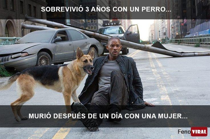 Sobrevivió 3 años con un perro...