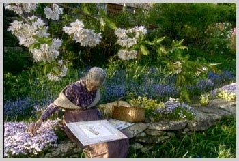 Reflections In The Afternoon: Memories of Tasha Tudor