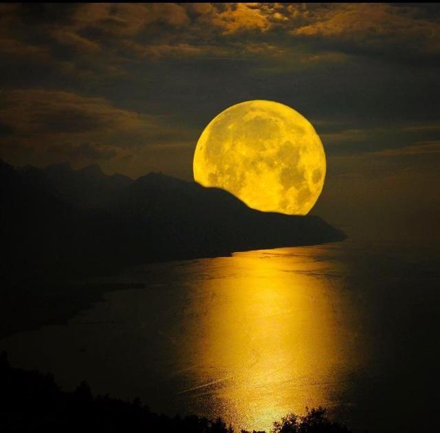 The Beautiful Super Moon !