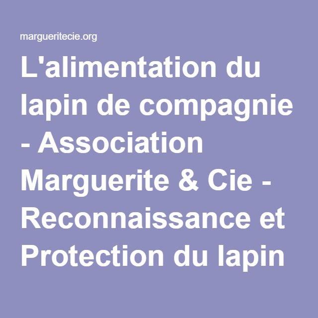 L'alimentation du lapin de compagnie - Association Marguerite & Cie - Reconnaissance et Protection du lapin de compagnie