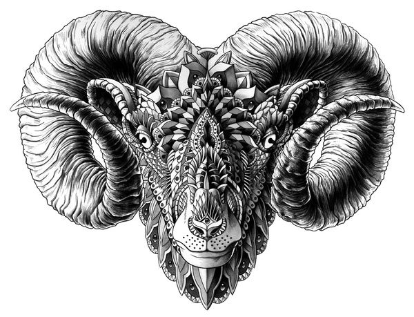 Ram Head Art Print by BioWorkZ   Society6