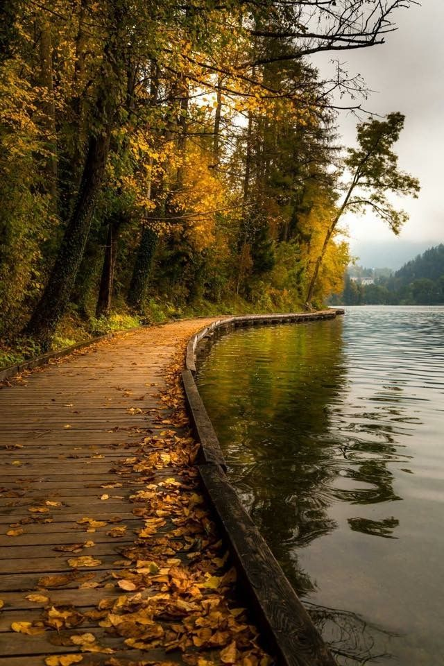 Fall – walkway along water