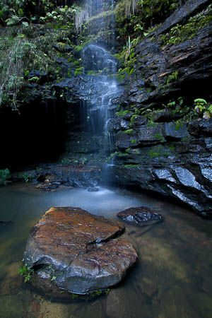 Empire Pass - Bushwalking NSW