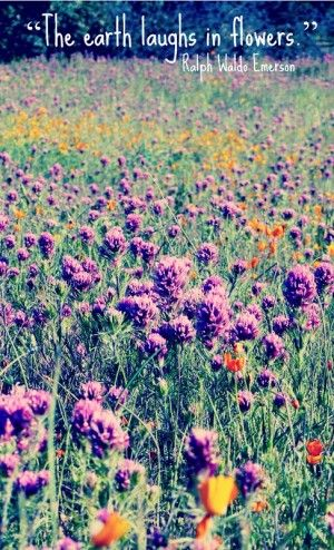 The earth laughs in flowers - Ralph Waldo Emerson