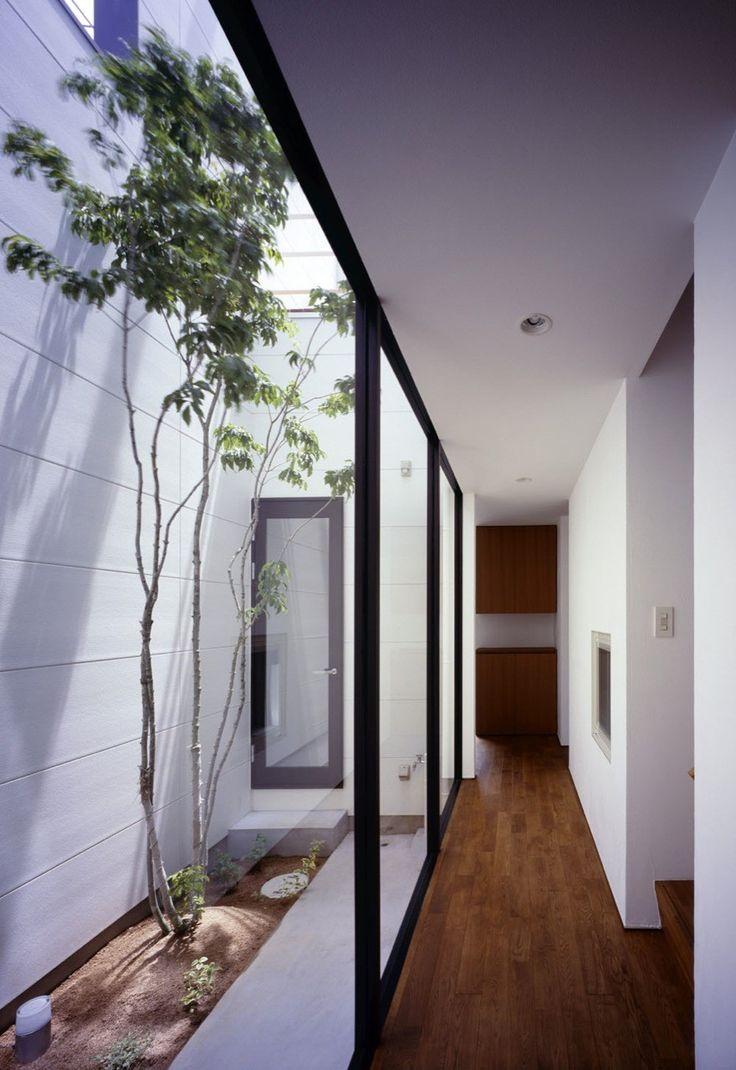 pasillo #ventanal