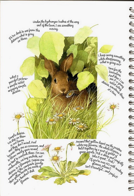 bunny study: marjolein bastin