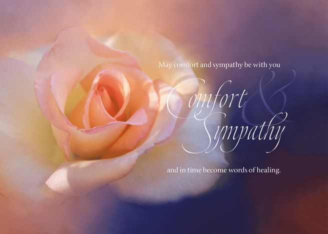 A Beautiful Rose Expresses Comfort And Sympathy Card Sympathy