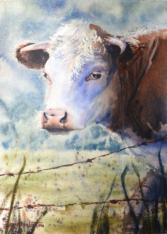 Watercolor painting of a cow in a field