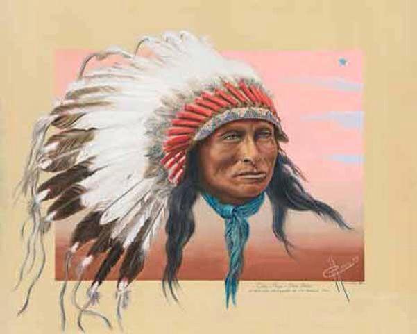 Een Hoofdtooi. Eigenlijk kennen we de betekenis van het dragen van veren niet echt, maar we vinden het allen een mooie kunstvorm. Men gaat er vanuit dat het de Sioux(Dakota) waren die de haardracht bedachten die nu wordt gezien als de traditionele haardracht van de Indiaan. Het gaat dan om de gevederde haardracht die we vaak zien bij krijgers en Chiefs in afbeeldingen. Alleen de moedigste en sterkste van een stam droegen de veer in het haar. Nog voordat de eerste blanken het gebied van de…