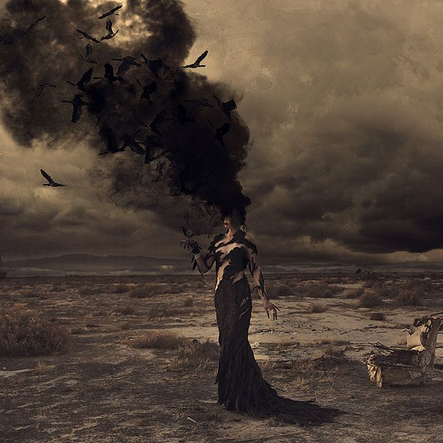 wild birds burning - Brooke Shaden blows my mind.