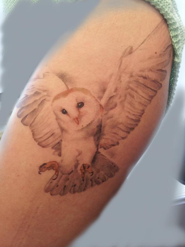 barn owl tattoo - 638×851