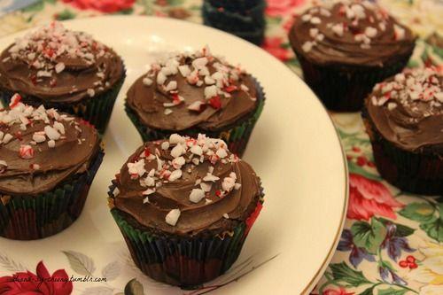 Sunshine Seeker — Chocolate Candy Cane Cupcakes