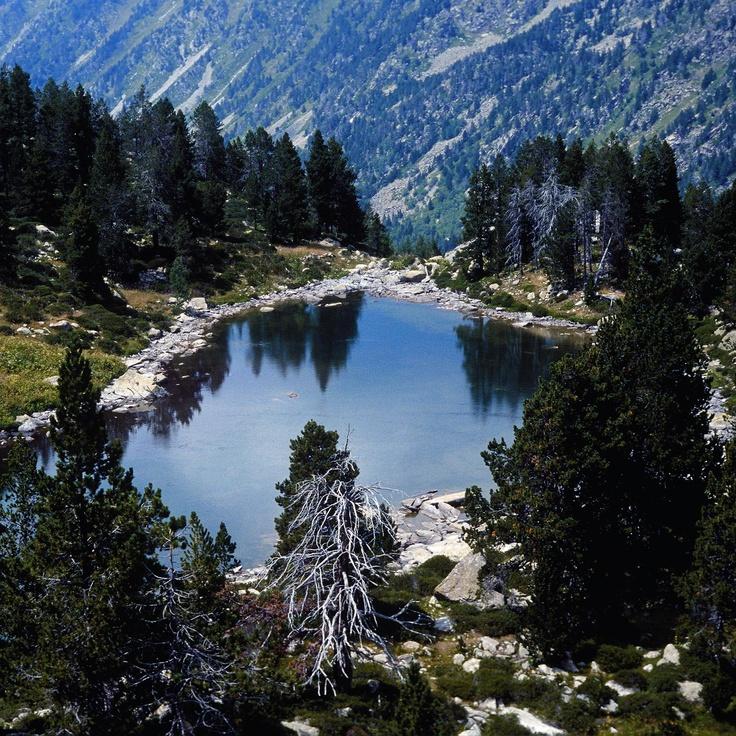 Vall del Riu Madriu. Andorra