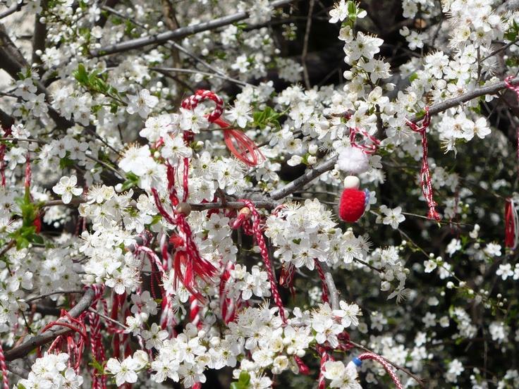 Welcome to my Bulgaria Видиш ли щъркел...закачи мартеничката на плодно дърво...