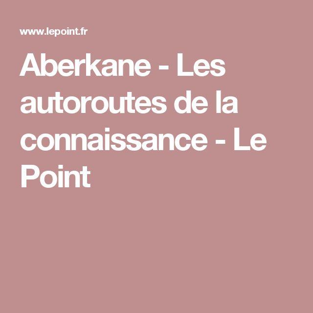 Aberkane - Les autoroutes de la connaissance - Le Point