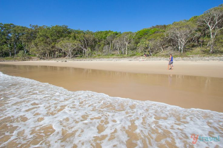 Noosa National Park - Queensland, Australia