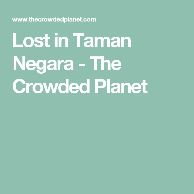 Lost in Taman Negara - The Crowded Planet