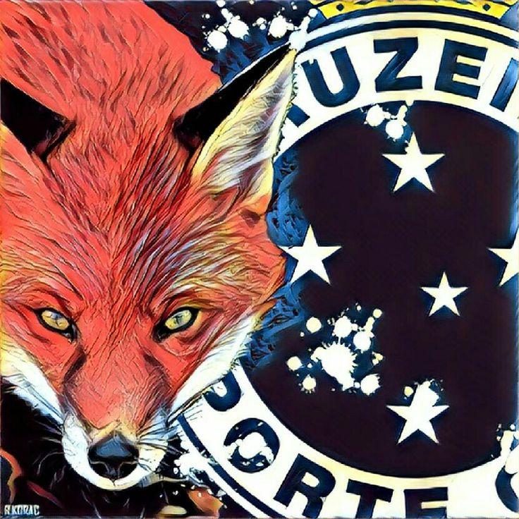 #Cruzeiro #PáginasHeróicasIMORTAIS #SomosCruzeiro #CruzeiroEsporteClube #MáfiaAzul #TFC #Fanaticruz #GeralCeleste #FechadoComOCruzeiro #BeloHorizonte #MinasGerais #Brasil #Futebol #Soccer #MaiorDeMinas #JamaisVencido #CruzeirãoCabuloso #Raposa #Fox #Raposão #Palestra #PalestraItália #Itália #TimeDoPovo #CruzeiroTimeDoPovo