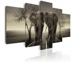 Картины животных - слоны