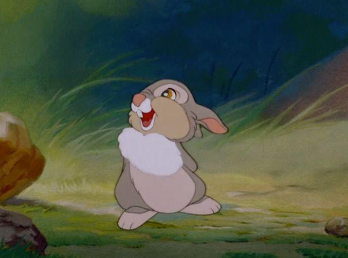 Thumper, from the Disney film 'Bambi'