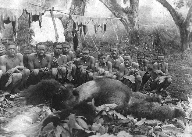 The Last Of The Kings: Very Sad Photos Of The Hard Life Of Congolese Gorillas - A group of African tribespeople squat round a huge dead gorilla, January 1932.