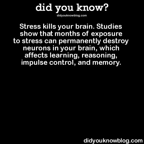30 best images about Stress Kills on Pinterest | Massage, Keep ...