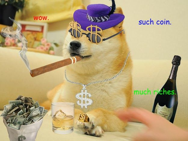 doge millionaire | Doge meme, Shiba inu, Doge