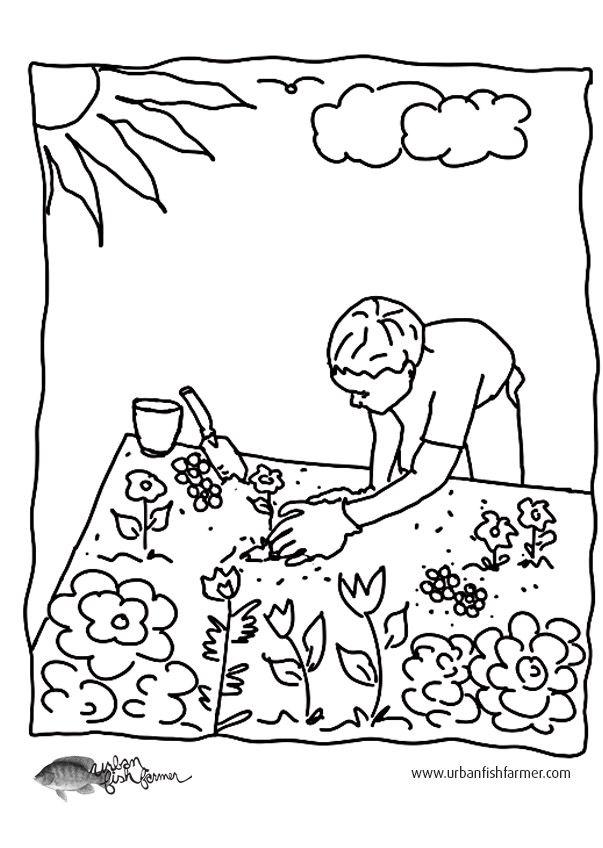 Garden Pictures For Colouring