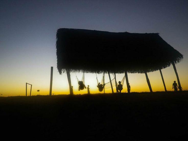 #pampa #pampaboliviana #amazona #rurrenabaque #bolivia #Latinomerica #sudamerica #travel #world #photography #summer #sunset #relax #verano #hot