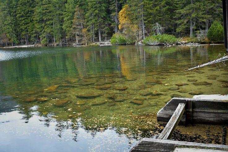 Černé jezero Šumava Les