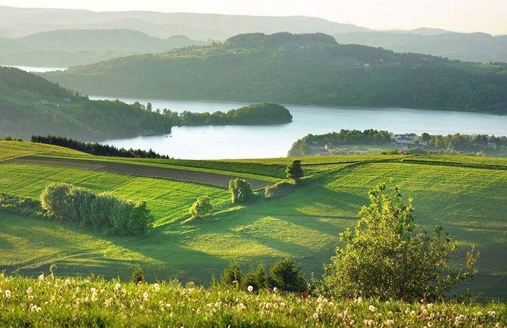 Jezioro Rożnowskie - małopolska