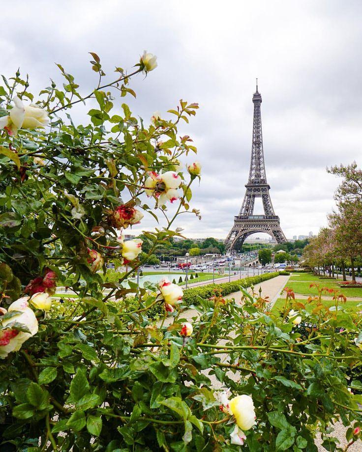 Escaliers Vosges: 4799 Best Paris Images On Pinterest