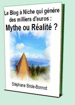 le blog à niche qu'est ce que c'est ? http://www.stephane-bride-bonnot.com/livre-numerique-offert/A=monicdu04