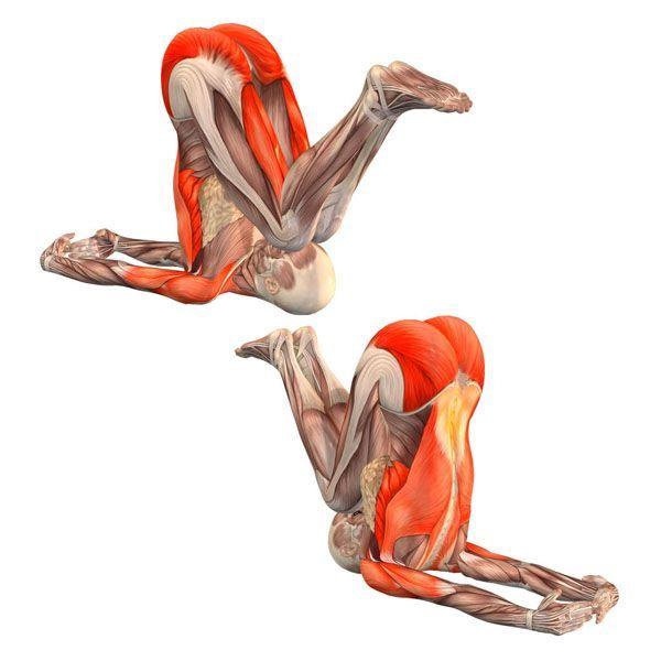Easy plow pose - Purva Halasana - Yoga Poses