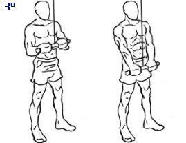 Puxada de tríceps