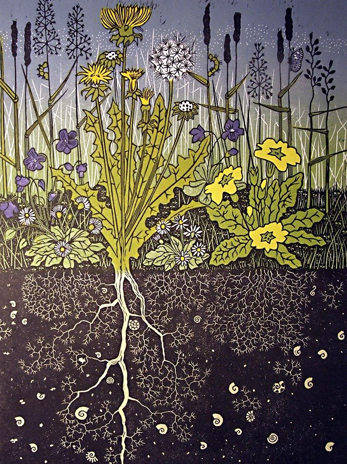 """Diana Ashdown        """"I am primarily a printmaker experimenting and devising different print techniques with lino, exploring texture, line and intricate pattern, in the observed and imagined works that I create. Subject matter reflects my interest in nature, landscape, garden and architectural settings. Colour is as important to me as line and texture. The ink"""