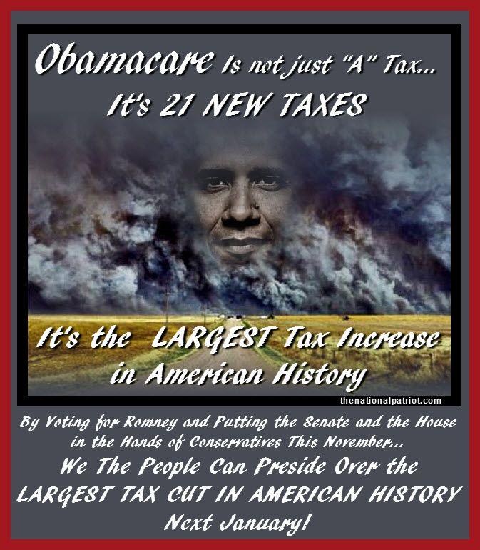 Obama's Health Care Plan Essay?