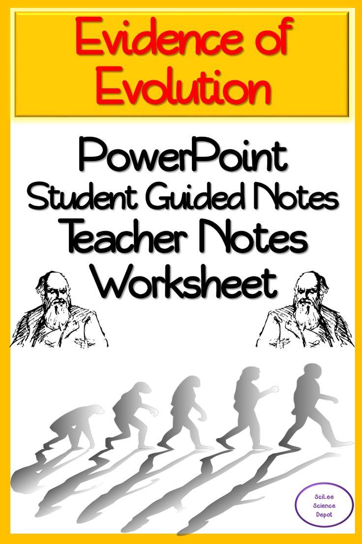 Evidence Of Evolution Worksheet Fossil Evidence Of
