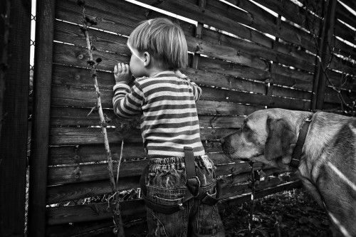 the world from behind the fence by Monika Strzelecka