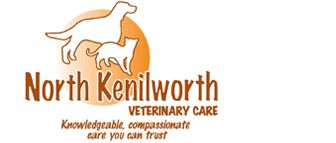 ACUPUNCTURE - North Kenilworth Veterinary Care - 342 W. McDowell Rd. Phoenix, AZ 85003 - 602-374-3091