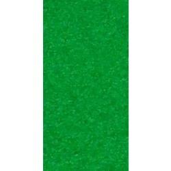 Black Diamond Scooter Grip Tape - Neon Green