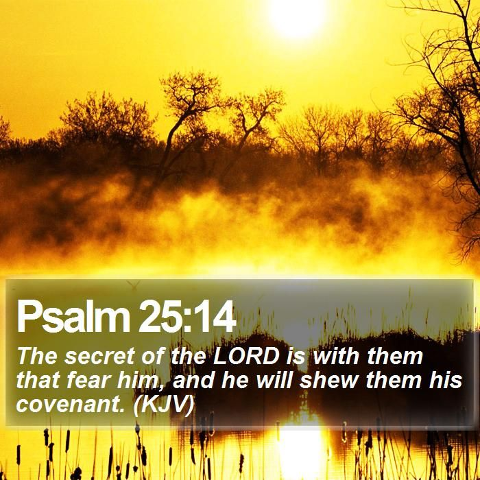 Psalm 25:14 The secret of the LORD is with them that fear him, and he will shew them his covenant. (KJV)  #Believe #Blessings #Heaven #Christianity #Worship #TeamJesus #JesusIsLord http://www.bible-sms.com/