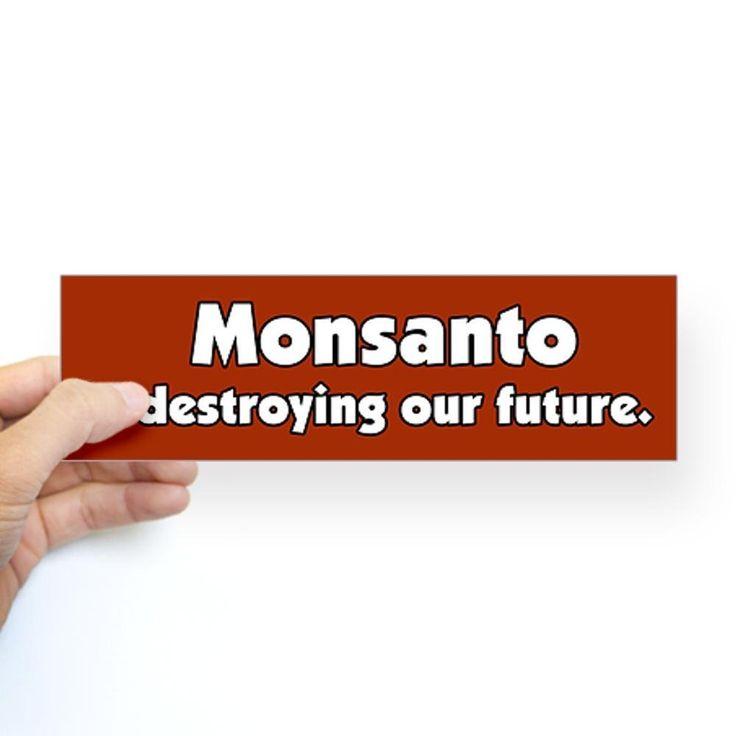 Amazon com cafepress monsanto is destroying our future bumper sticker sticker bumper