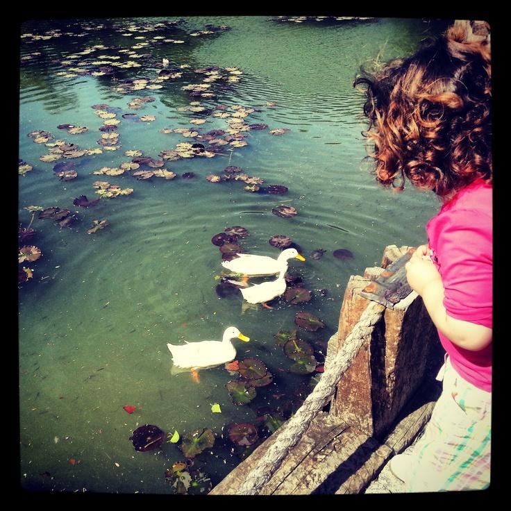 Little cute girl - Atatürk Arboretumu
