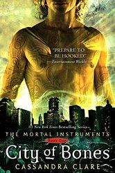 If you liked the Twilight series, you will love Cassandra Clare's series!