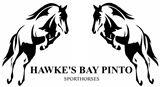 Hawke's Bay Pinto #happyclient www.e1web.co.nz