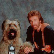 Chuck Norris in Top Dog (1995)